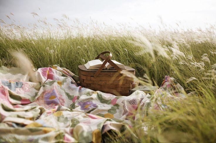01_picnic