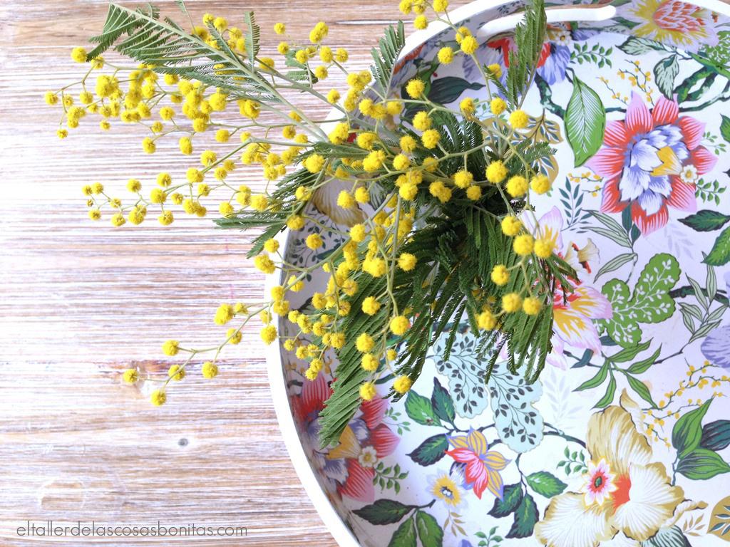almendros y mimosas_05
