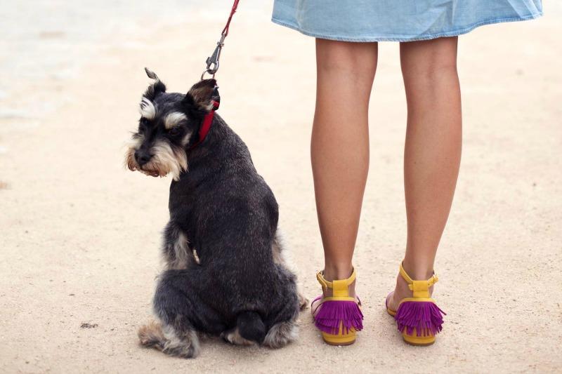 zapatos_kiva_34
