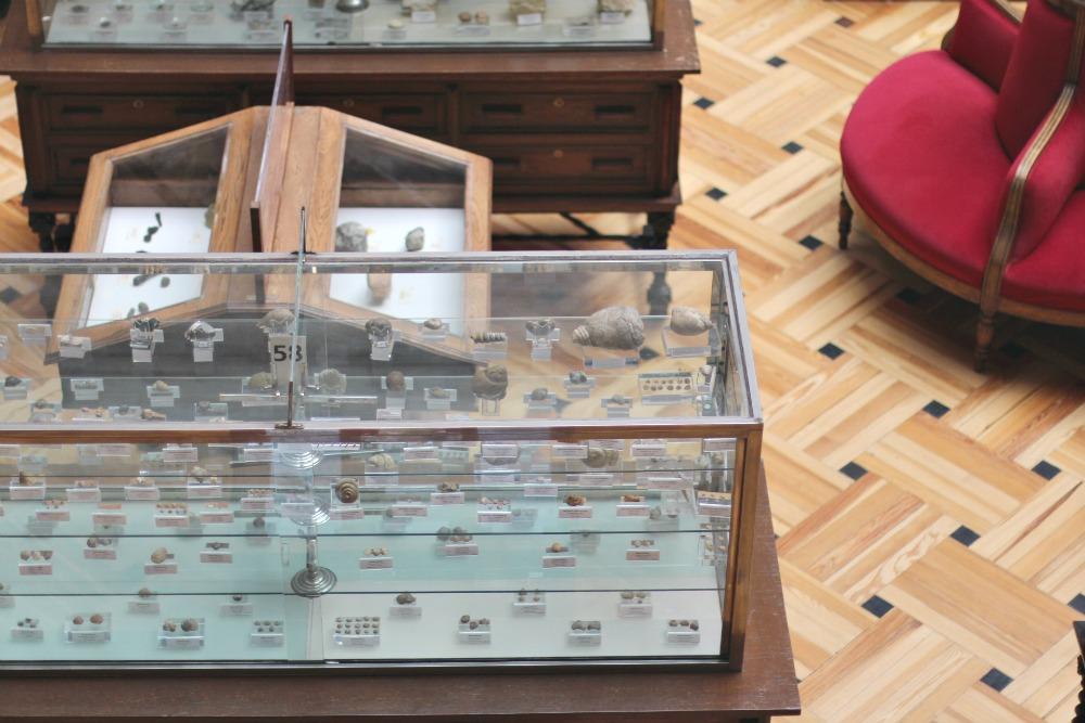 Museo Geominero en Madrid con niños 15